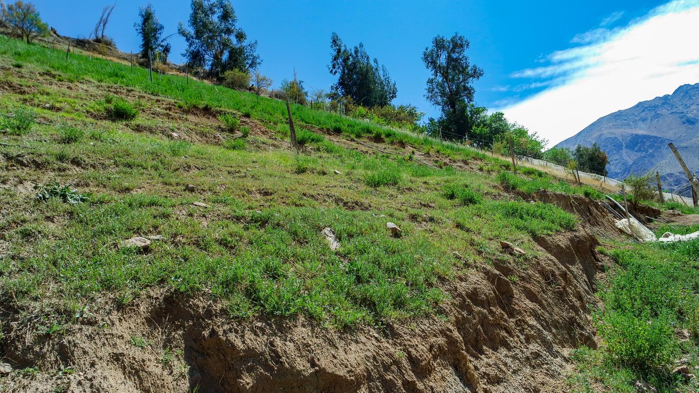 Parcelas en Pisco Elqui, ladera, hermosa vista. $33 millones